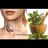 Тези 8 лечебни треви подобряват функцията на щитовидната жлеза по-ефикасно от хапчетата: