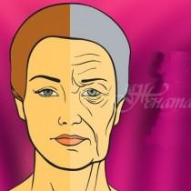 4 научно доказани начина за удължаване на младостта на мозъка- здрава и солидна памет