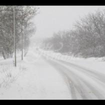 Дежурният синоптик, Петър Янков: Температурите падат сериозно, ще има и снеговалеж!