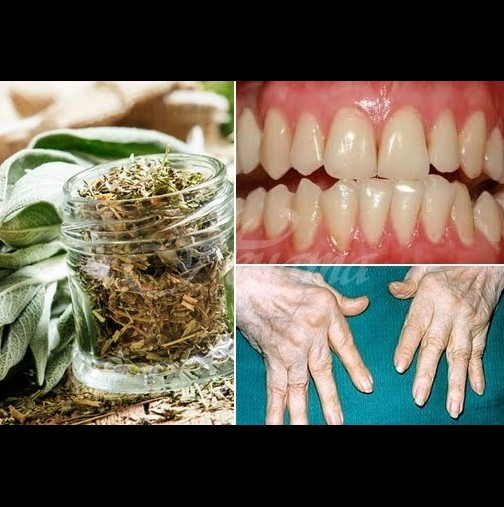 Лечебната мощ на малките зелени листенца няма равна: побеждава болката, артрита и още 17 болести