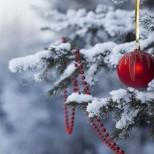 Коледен Хороскоп за периода 24, 25 и 26 декември-Ако сте Овен, Лъв или Стрелец-Приятни изненади, Рак, Скорпион или Риби-Приходи