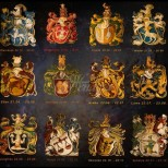 Един от най-верните хороскопи разкрива каква личност си-Соколите-родени лидери,Елен-Творчески натури