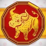 Хороскоп за 2019-Годината на Кафявия глиган, зодия Воден бивол: Родените през 1925, 1937, 1949, 4961, 1973, 1985, 1997 или 2009.