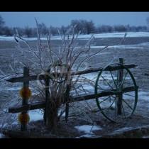 Актуална прогноза за времето през януари-От кучешки студ до жега!