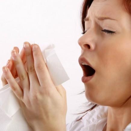 Ceget+ в сезона на настинките