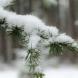 Актуална прогноза за времето-Ще вали ли сняг на Коледа