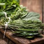 4 билки за студеното време-Вдигат ви на крака и се оправяте за ден с тях
