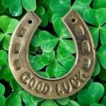 Талисмани на късмета за всяка зодия-Да не се отървете от богатство и просперитет през новата година