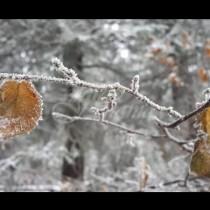 Студ сковава страната-Ето къде ще е най-студено следващите дни!