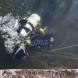 Водолази откриха трупа на удавеното, заради селфи дете