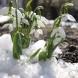 Какво ще е времето през февруари 2019 - Прогноза по дни-Очакват ни големи изненади!