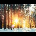 Пролет ли иде! Температурите се качват до 20 градуса! Прогноза за времето до средата на февруари