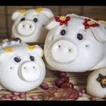Годината на Жълтото земно прасе  ще е добра за печелене на пари-Ето кои зодии ще спечелят най-много