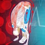 Бърз начин да свалите и нормализирате кръвното си без лекарства