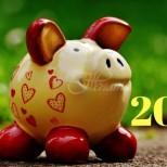 Кои цветове носят късмет в годината на Жълтата свиня