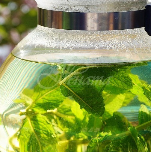 Най-добрата билка за лечение на гастрит и киселини