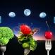 Лунната диета февруари 2019-Правила за лесно спазване