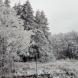 Зимата се завръща със сняг и студ