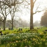 Седмична прогноза за времето-Пролетта се завръща мощно с 20 градусови температури