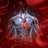 Храните, които носят сърдечно-съдови заболявания и убиват сърцето ви малко по малко