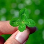 Зодиите късметлии-Галеници на Фортуна, за които късметът е нещо обичайно