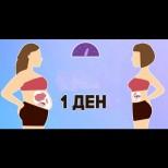 Пълна детоксикация на тялото за 1 ден в 5 стъпки