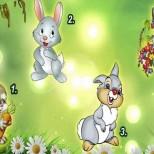 Изберете си зайче на късмета и разберете какво ви очаква през пролетта
