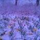 Дежурният синоптик обяви седмичната прогноза за времето за периода от 11 да 17 март--Понеделник 21 градуса, после рязък спад ни чака
