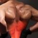 Болката в гърба е доказателство, че хората не произхождат от Земята?