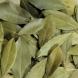 Рецепта с дафинов лист за очистване на организма от солта