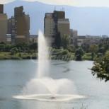 Мистериозна находка в езерото на квартал Дружба в София