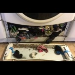 10 елементарни грешки при прането, които съсипват и дрехите, и пералнята - всички ги правим: