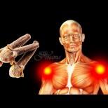 Какво се случва с тялото ви, ако започнете да ядете 2 зърна на ден