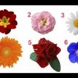 Цветята разкриват каква е женската ви същност