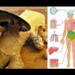 Качества на джинджифила-Лекува рак, рефлукс, възпалено гърло, главоболие-Ето рецептите!