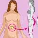 Как да намалим инсулина, за да смъкнем бързо корема, бричовете, паласките и мазнините по корема