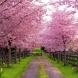 Пролетен хороскоп 2019-Нови живителни сили за 6 зодии-Щастливо начало, финансови успехи и здраве ви чакат