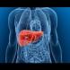 Витаминът, без който черният дроб се разболява!
