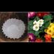 Сложете една от тези формички на дъното на саксията и ефектът ще ви изненада - струва стотинки, а върши чудеса за цветята: