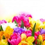 Хороскоп за днес, 21 април-3 зодии ще са щастливи в днешната неделя