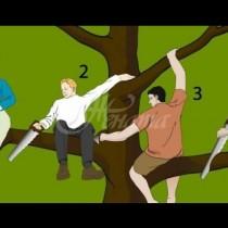 Кой е най-големият глупак на картинката? Изборът ще ти помогне да разбереш кой си: