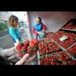 Как правилно да изберем най-хубавите ягоди на пазара - експертите съветват да търсим тези признаци: