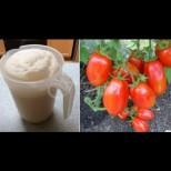 Краставиците подхранвам на 10 дни, доматите - на 15. Добивът ми скочи двойно, а и не знам какво е това болест по растенията: