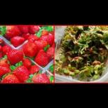 Дръжките на ягодите са истинска съкровищница: диабет, проблемна кожа, тънка и безжизнена коса - няма проблем, който да им се опре