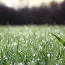 Синоптиците дадоха актуална прогноза за времето през юни по десетдневки-Ето кога ще вали!