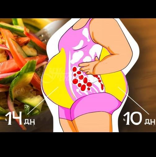 Протеинови салати за бърза загуба на килограми без глад