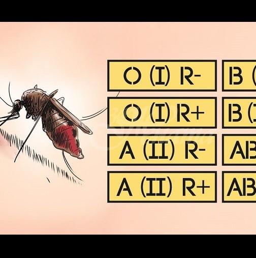 Защо комарите предпочитат точно вас-Как малките кръвопийци избират жертвите си-Със сигурност имат предпочитания