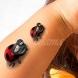 17 красиви и нежни татуировки (снимки)