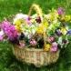 Хороскоп за днес, 26 май-Ярък шанс за сполука при 6 зодии в неделя