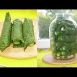 Вече правя ли краставички, задължително ги увивам в лист хрян - супер хрупкави и приятно пикантни, а как разяждат само: